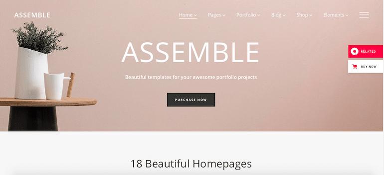 assemble best wordpress themes