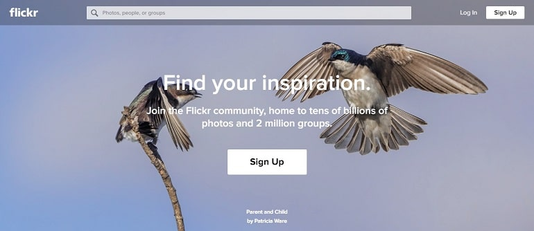 Flickr free images