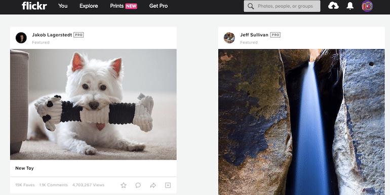 flickr homepage