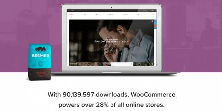 WooCommerce Pros Cons
